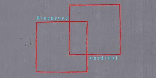 45. Pinegrove - Cardinal
