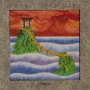 Peter Hammill - Fireships