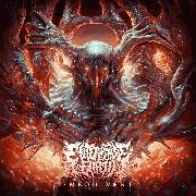 good deathcore bands