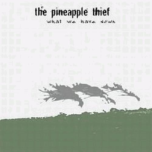 the pineapple thief – magnolia (2014)
